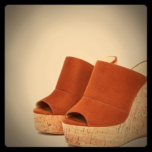 Adorable BNWT Fall Wedges
